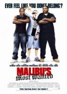 Malibu's Most Wanted