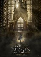 <b>Stuart Craig, Anna Pinnock</b><br>Phantastische Tierwesen und wo sie zu finden sind (2016)<br><small><i>Fantastic Beasts and Where to Find Them</i></small>