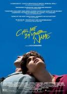 Call Me By Your Name (2017)<br><small><i>Call Me by Your Name</i></small>