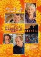 Best Exotic Marigold Hotel